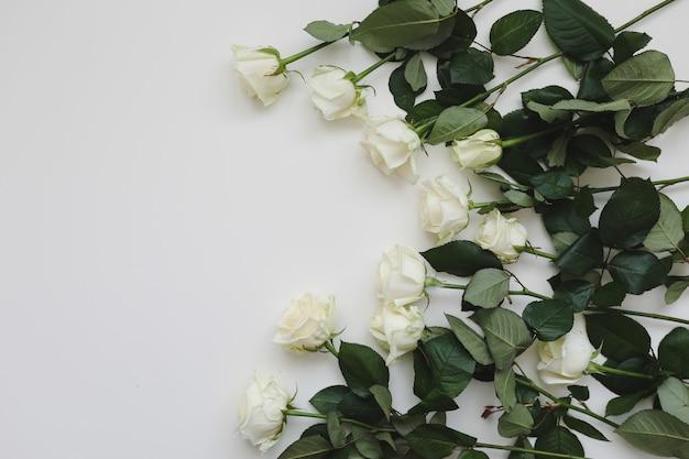 白いバラと白い背景の上のテキストのための場所とエレガントな花の構成