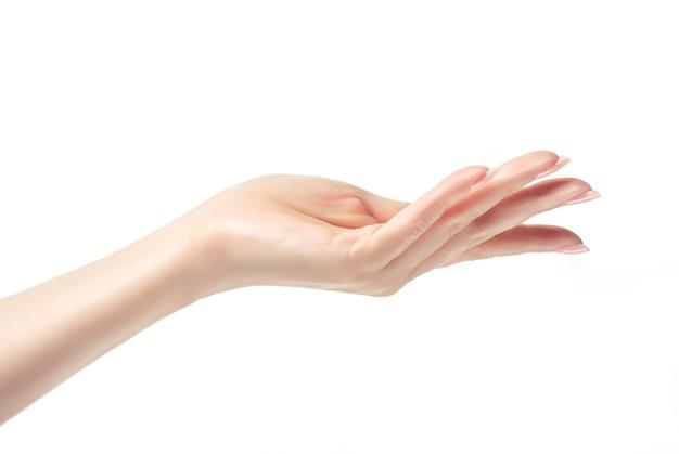 爪に淡いピンクのマニキュアを施した優雅な女性の手の優雅なジェスチャー。