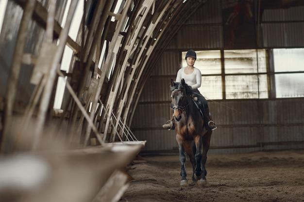 Элегантная девушка на ферме с лошадью