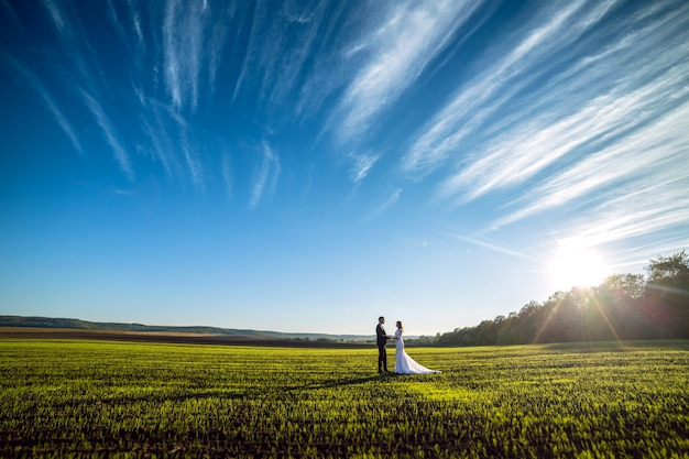 Elegant groom and chic brunette bride on a background of nature and blue sky. view from afar