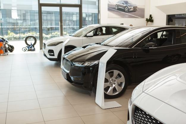 Elegant luxury cars for sale at dealership salon