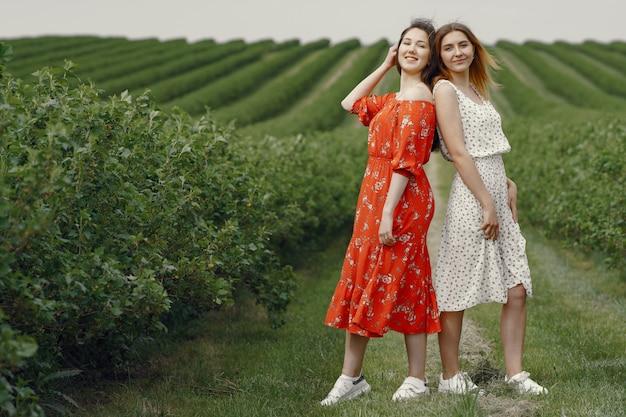 Ragazze eleganti e alla moda in un campo estivo