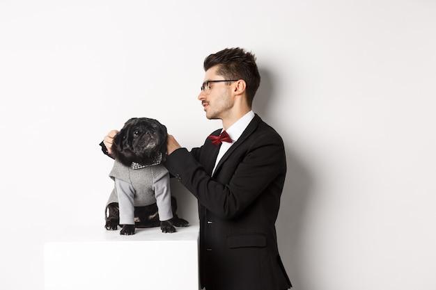 Элегантный молодой человек наряжает симпатичного черного мопса в праздничный костюм, готовясь к празднованию рождества, белый