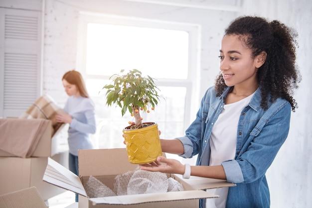 装飾の要素。箱から植物を取り出し、ルームメイトが毛布を開梱しながら笑っている魅力的な若い女の子