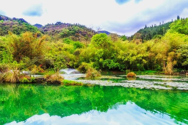 Слон река естественная вода девять туман