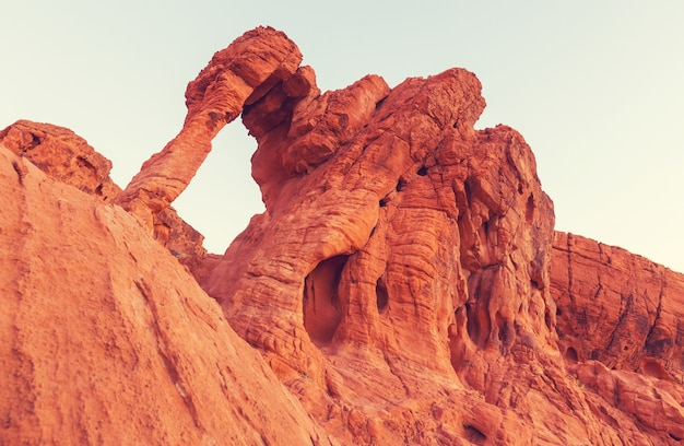Elephant rock in the valley of fire state park, nevada, usa