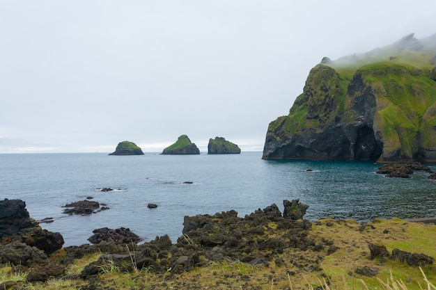象の形の岩、ヴェストマン諸島の島のビーチ、アイスランド
