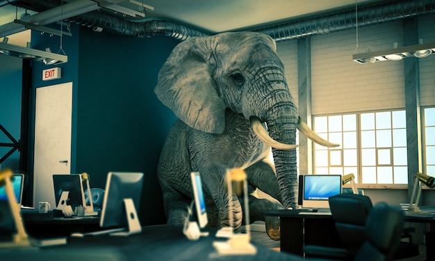 オフィスの中に座っている象。未解決の問題の概念。 3dレンダリング。