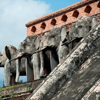 왓 체디 루앙, 치앙마이, 태국에서 코끼리 동상