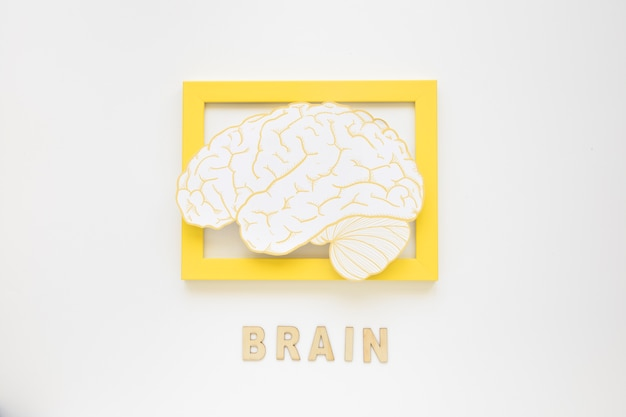 Elevated view of brain frame with text