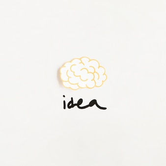 Elevated view of brain with idea word on white background