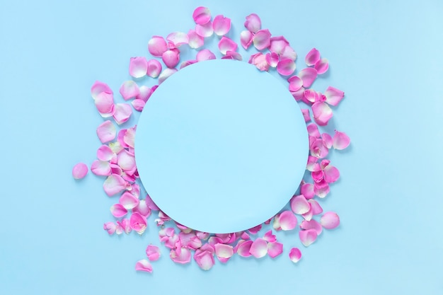 Elevated view of circular frame surrounded with pink rose petals over blue background