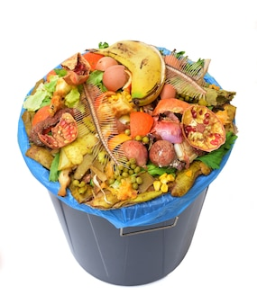 Elevated view of a compost bin