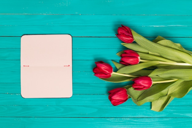 Elevated view of empty card and red tulip flowers against green background