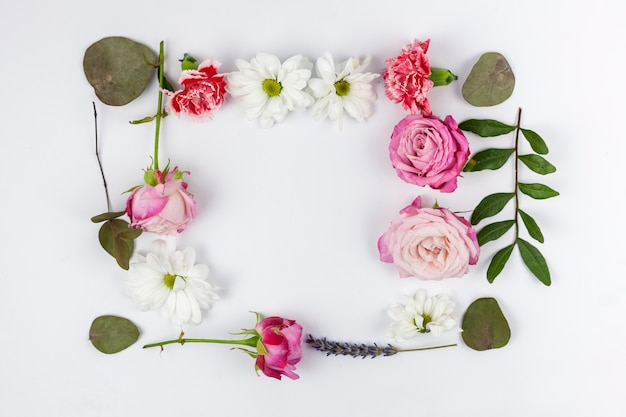 Elevated view of frame made with colorful flowers and leaf over white background