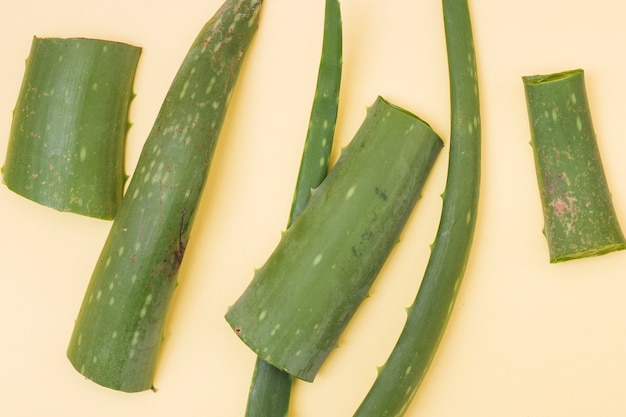 An elevated view of fresh aloe vera leaves on beige background
