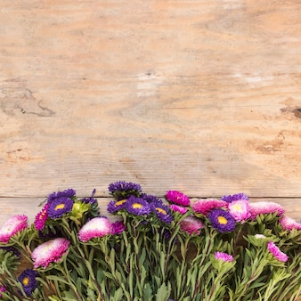 Elevated view of fresh flowers at the edge of wooden backdrop