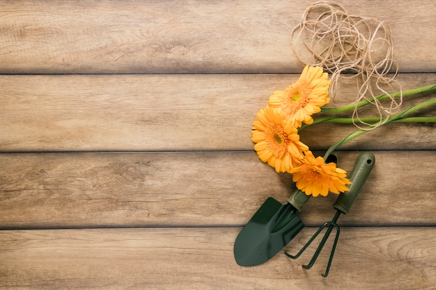 Elevated view of fresh flowers; string and gardening equipments on brown wooden desk