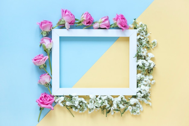 Elevated view of fresh flowers surrounding frame on colorful dual background