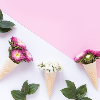Elevated view of fresh flowers in waffle ice cream cone on dual backdrop