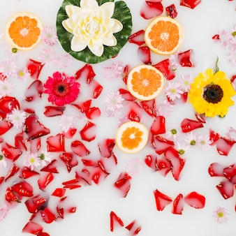 Elevated view of grapefruit slices with flowers and petals floated on clear white water