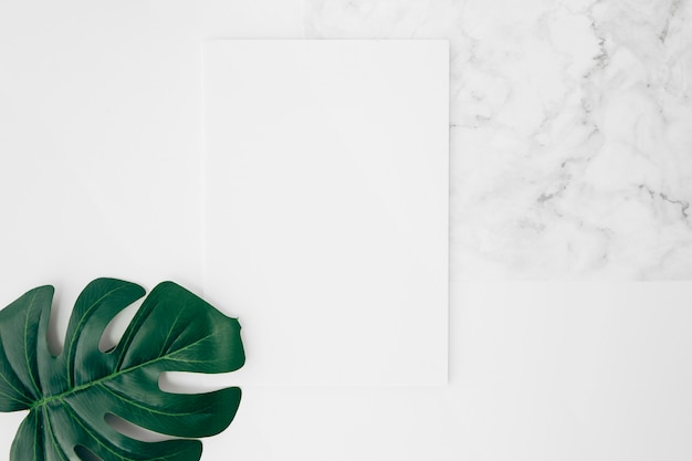 An elevated view of green monstera leaf on white blank card over the desk