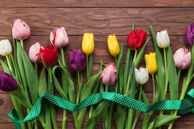 An elevated view of green ribbon over the colorful tulips on wooden textured plank