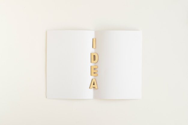 Elevated view of idea word on white paper
