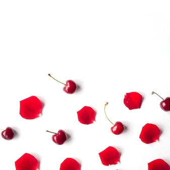 Elevated view of cherry and rose petals over white background