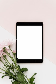 Elevated view of digital tablet and fresh flowers on dual background