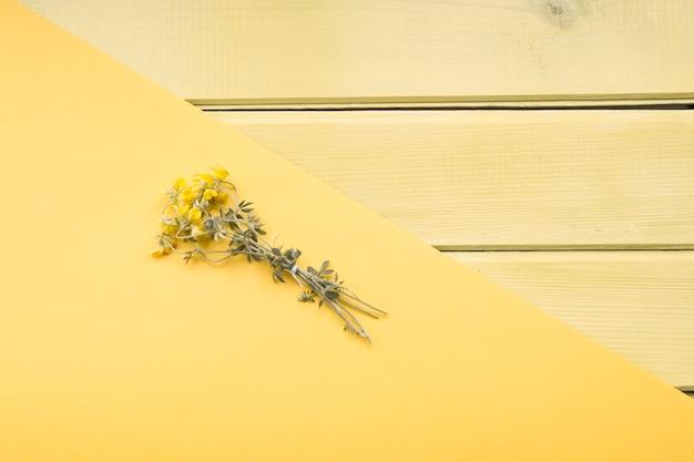 黄色の紙のob木製の背景に乾燥した花の上昇した眺め
