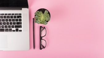 Elevated view of laptop; spectacles; pencil and potted plant on pink surface