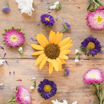 Elevated view of various colorful flowers on wooden surface