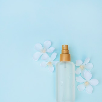 Elevated view of perfume bottle and white flowers on blue surface