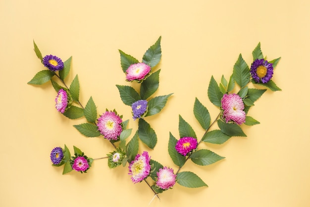 Elevated view of pink and purple flowers on yellow backdrop