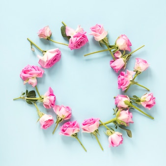 Elevated view of pink roses on blue background