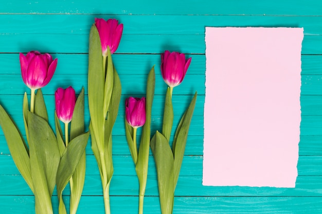 Elevated view of pink tulips flowers with blank paper on green wooden background