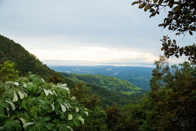 Elevated view of tropical mountain in costa rica