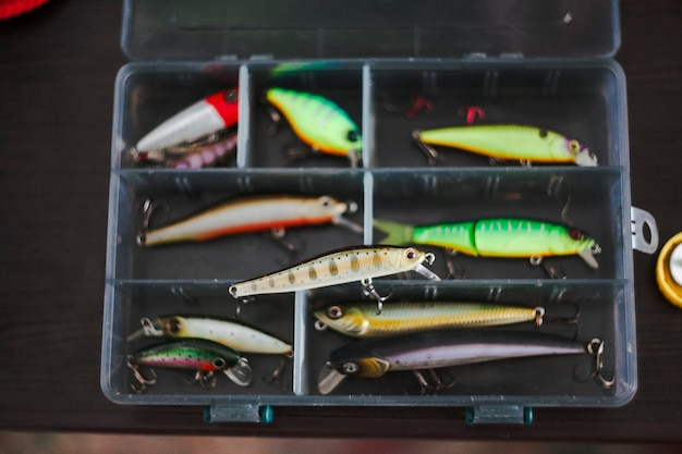 Elevated view of various fishing lures in box