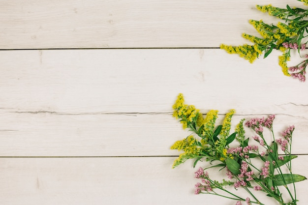 An elevated view of yellow goldenrods or solidago gigantea and limonium flowers on wooden backdrop