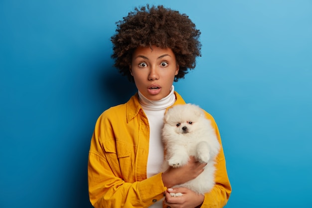 恥ずかしい暗い肌の女性が子犬とポーズをとり、一緒に気分が良く、何かひどいことに驚いて、黄色い服を着て、青い背景に対してスタジオでポーズをとります。