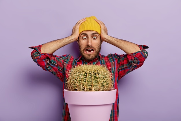 Embarrassed man stares at big cactus plant, keeps both hands on head, wears yellow hat and checkered shirt
