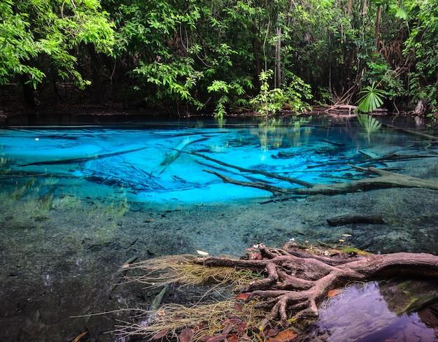 태국 크라비 지방의 에메랄드 블루 풀 (sra morakot). 열대 우림에서 맑은 푸른 물의 아름다운 자연 장면.