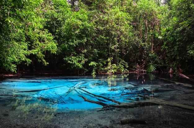 Emerald blue pool (sra morakot) in krabi province, thailand