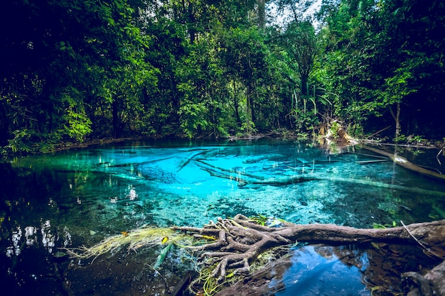 Emerald blue pool in thailand. beautiful lanscape