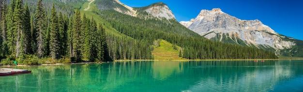 주변에 아름다운 잎이 우거진 숲이있는 여름의 에메랄드 호수