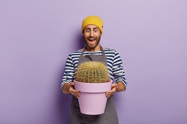 Emotive male gardener with planted cactus in pot, looks surprisingly at big house plant grown with love after fertilizing