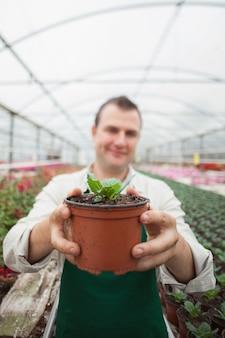 鉢植えを保持している従業員