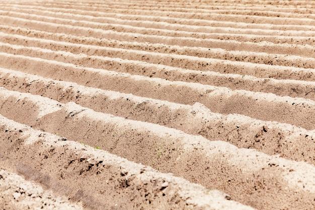 作物を播種するために準備された農地の空の農地部分空の畑のすき