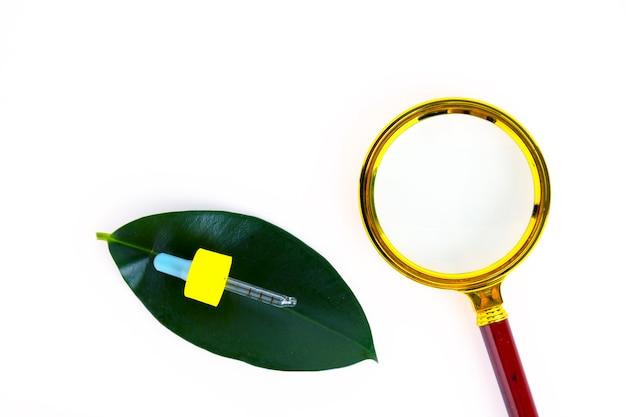 緑の葉と拡大鏡の背景にピペットが付いた空の琥珀色のガラスのエッセンシャルオイルボトル。コピースペース